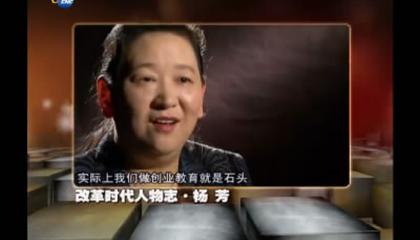 改革时代人物志-杨芳
